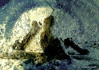 De kikker ontdekt de aarde (serie nr 1)